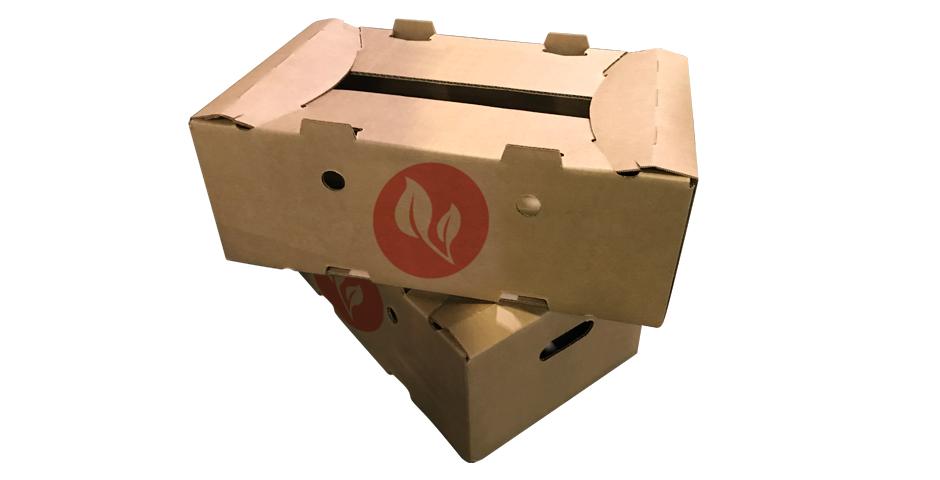 caja vegetales